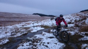 Robin on the Menteith Hills single track.